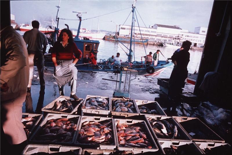 魚類批發拍賣,漁港。 亞倫.瑟庫拉,《魚的故事》,第五章〈瓶中信〉,1992–1994,攝影