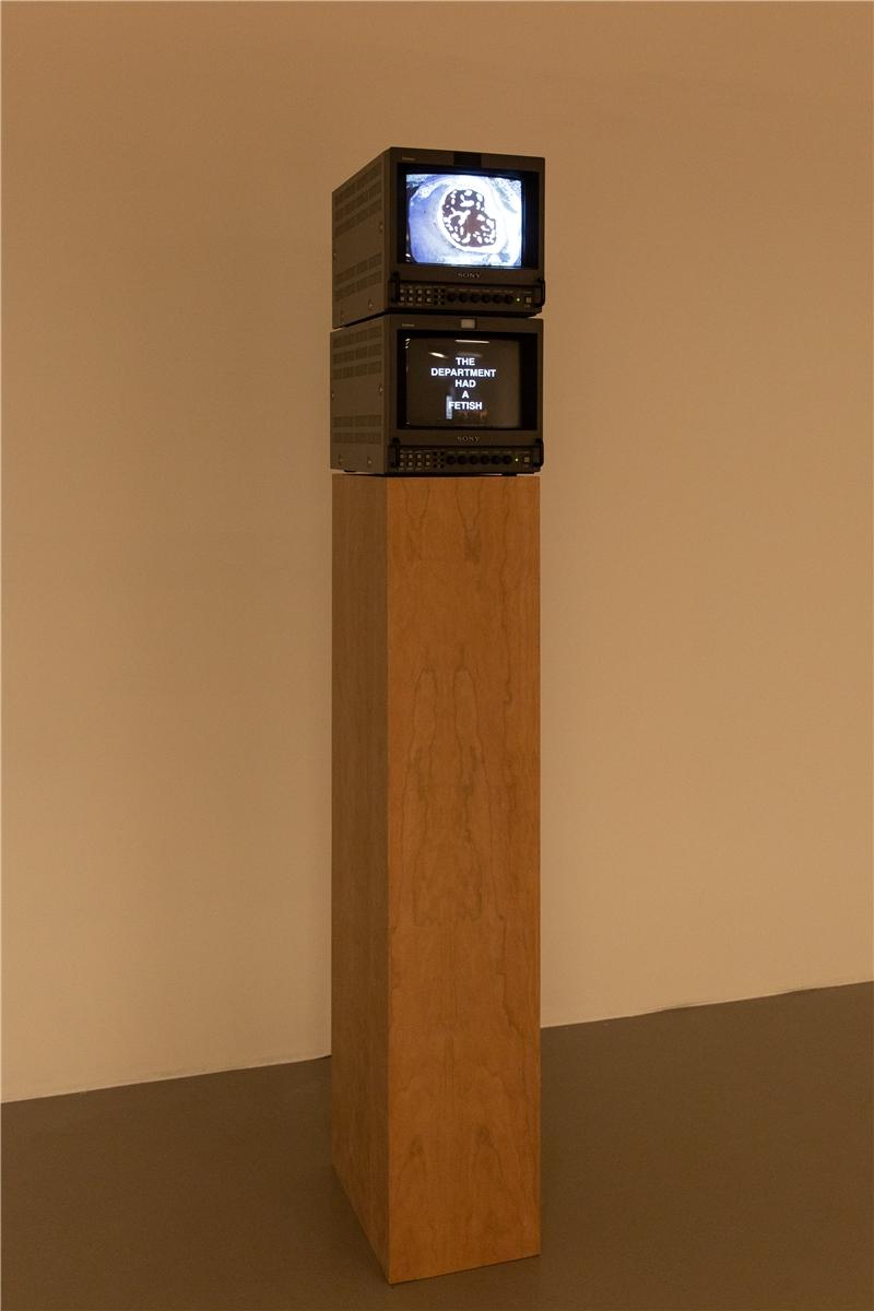 尼古拉斯.曼甘,《白蟻經濟學》,2018,3D列印石膏、汙泥、合成聚合物塗料、膠合板、塗漆低碳鋼、螢光燈、四部Sony Trinitron PVM 9042QM監視器,檔案和錄製的影像(循環播放)、白蟻警告信號之四聲道環繞聲,尺寸視空間而定。The Michael Buxton Collection 典藏