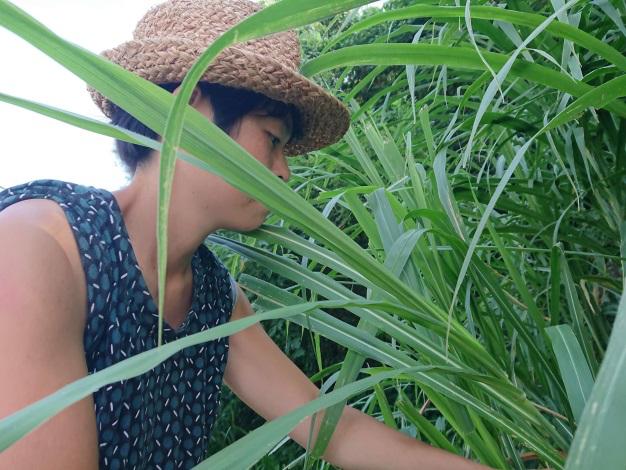 「雜草稍慢」林芝宇。攝影:余泓緯