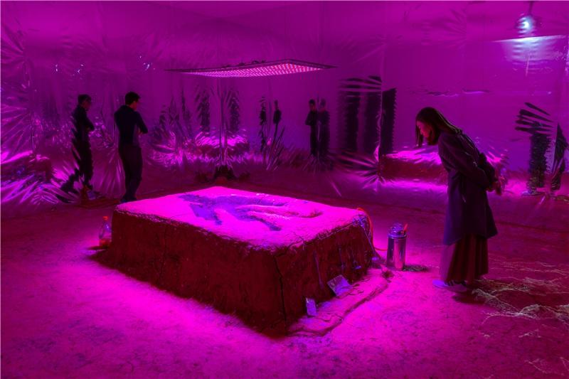 林從欣,《字花》,2018,泥土、黏土、有機質肥料、泥漿、各式植物種子、生長燈、反光聚酯薄膜、木製支架、鐵網、影片、玻璃容器,尺寸視空間而定。藝術家、洛杉磯Ghebaly Gallery提供