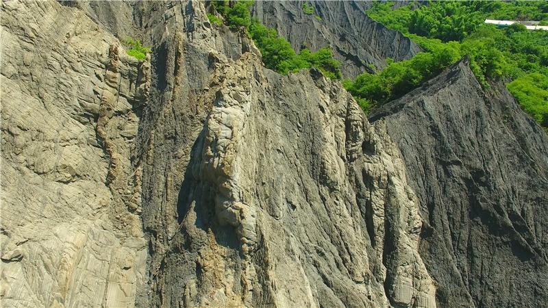 守護龍崎自然地景行動。