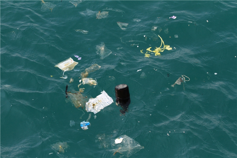 臺灣海域近百分之七十六均記錄到水面漂流垃圾,其中以塑膠成分垃圾比例最高。
