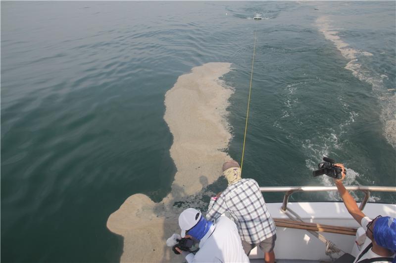 黑潮針對全臺灣海域規劃五十一個檢測點進行塑膠微粒的撈取。