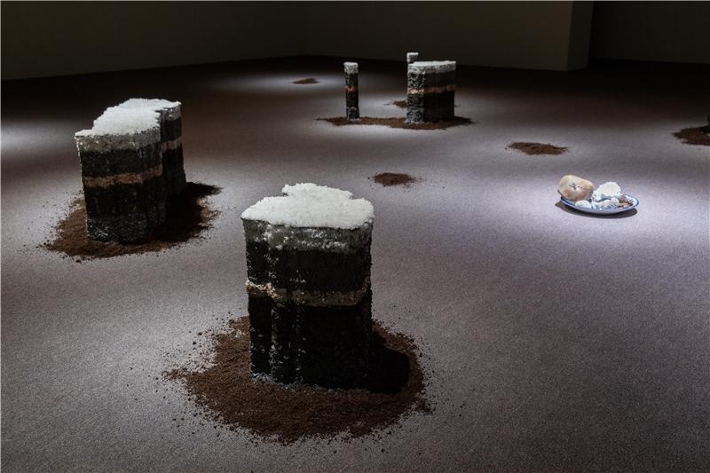 隆薩克.阿努瓦特菲蒙,《人類世》,2018,複合媒材,尺寸視空間而定