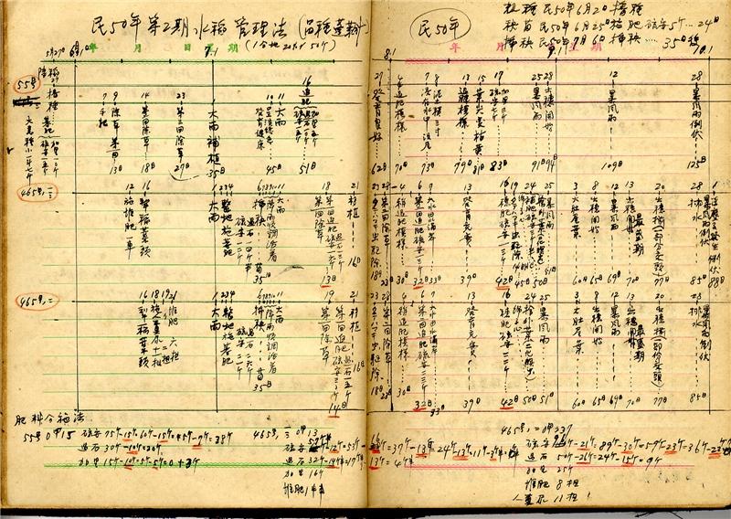 陸季盈於耕種筆記中記錄1961年第二期水稻管理法。資料由國立臺灣歷史博物館提供